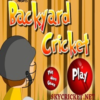 Play Backyard Cricket Game