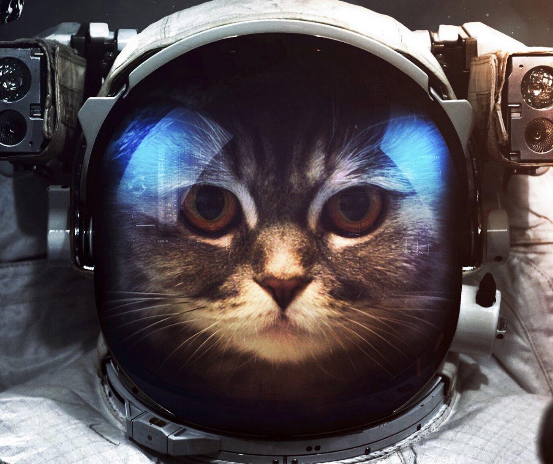 10 animais de estimação da ficção científica