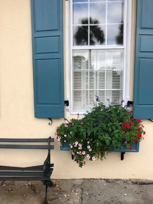 Rainbow Row window box florals, Charleston SC
