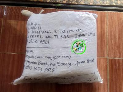 Benih Pesanan   NARTI Tuban, Jatim  (Setelah Packing)