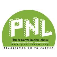 Programa de Normalizacion Laboral
