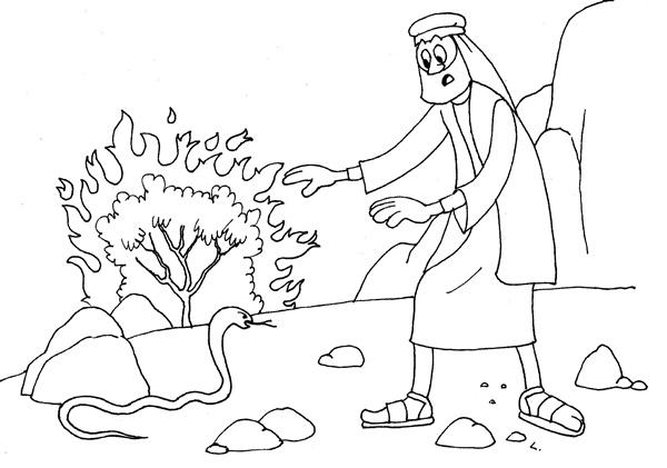 Desenho Biblico Para Pintar Cajado De Moises Vira Serpente
