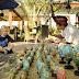 4 Hal yang Sebaiknya Dilakukan Tatkala Berlibur ke Sanur Bali