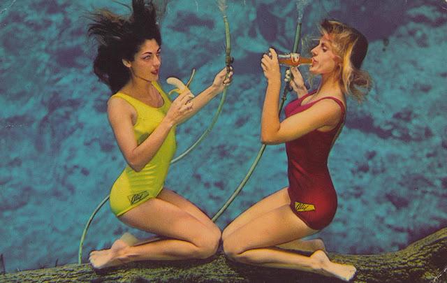 Florida Family Travel Weeki Wachee Springs |Meet Weeki Wachee Mermaids