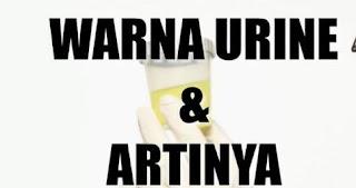 4 Jenis Warna Urine yang Menandakan Kondisi Kesehatan Anda