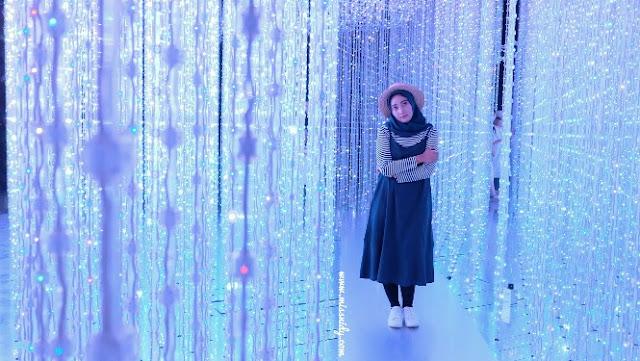 foto-foto di artscience museum