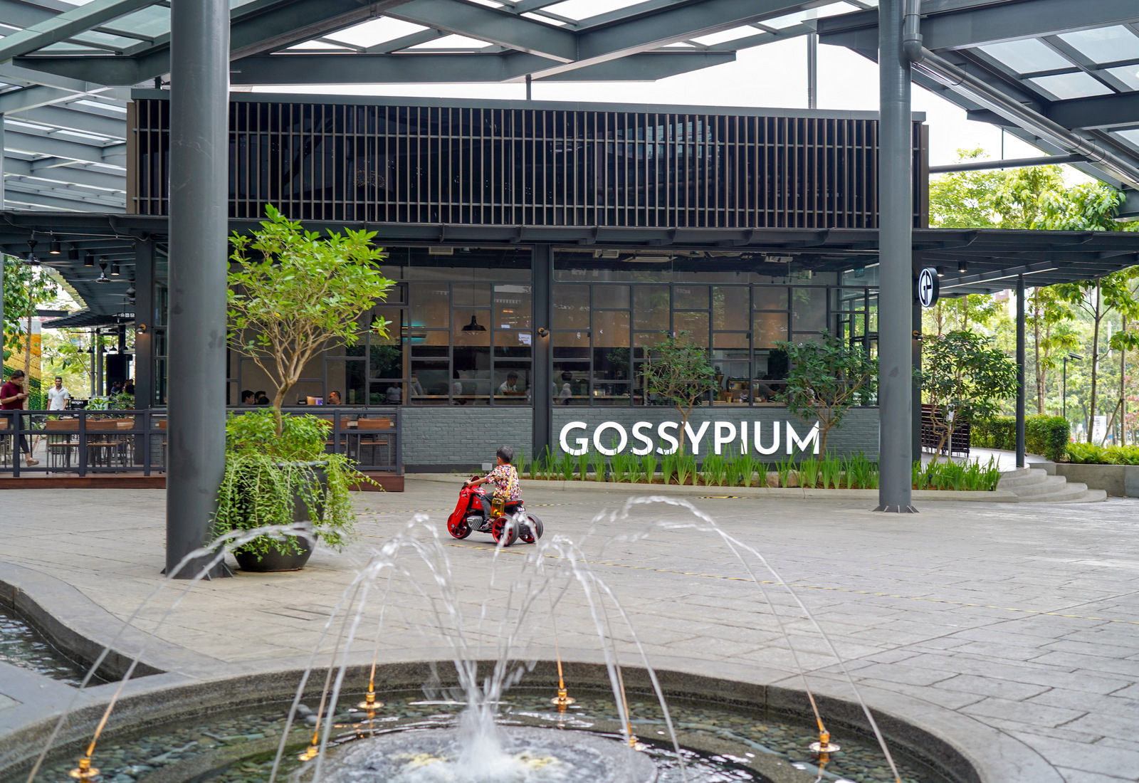 gossypium, bangsar south