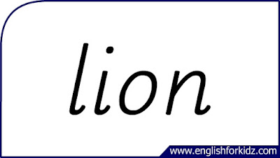 lion flashcard, single word