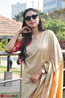 Angana Roy in Silk Saree at Teaching Tree Carnival .xyz 032.JPG