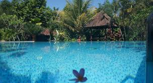 Agro Wisata Tlogo & Resort Ambarawa, Hotel Paling Dicari di Ambarawa
