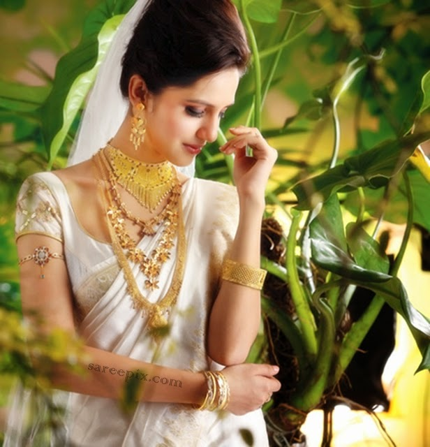 Bhima Jewellers Ad: Koyal Rana Saree Photos