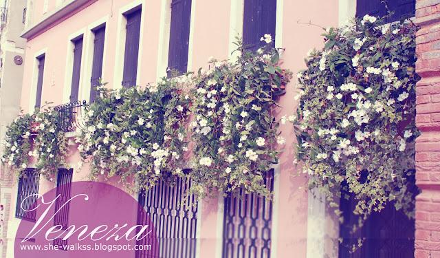 Places: Veneza