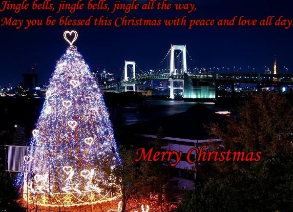 christmas tree and light it
