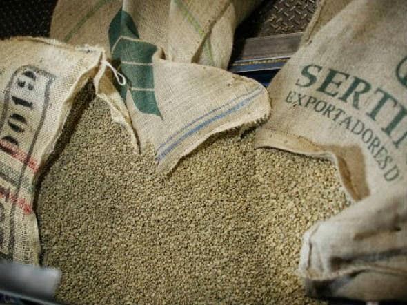 Café Verde, um novo aliado na dieta (Imagem: Reprodução/Internet)