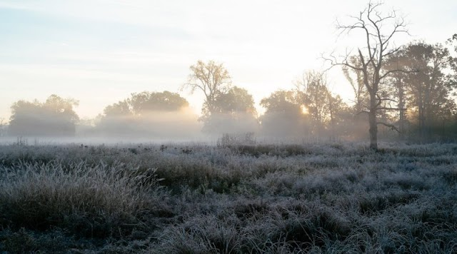 Παγετός και ομίχλη τις νυχτερινές και πρωινές ώρες της Πέμπτης και της Παρασκευής – Τοπικές βροχές από το Σαββατοκύριακο