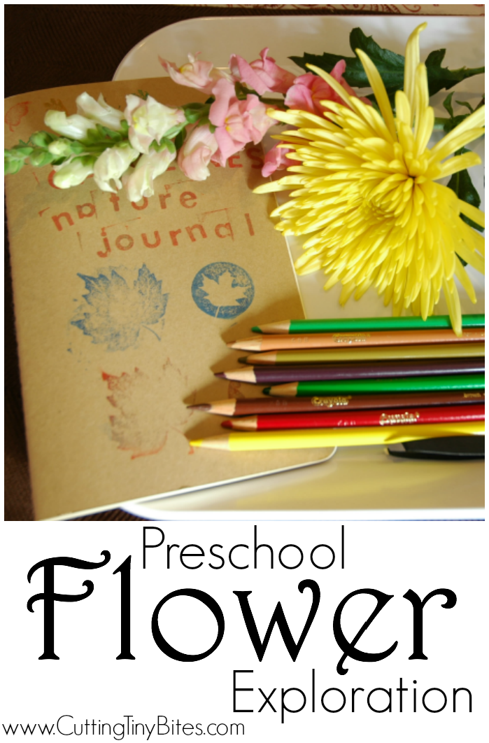 Preschool Flower Exploration-  Science and art activity for kids. Great for garden or spring theme.