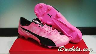 Sepatu Bola Puma Evospeed SL Pink