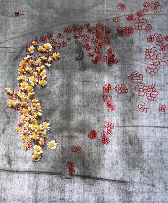 Flores (Anthemis Bornmuelleri) colocadas  sobre os 'buracos' de informação no Santo Sudário