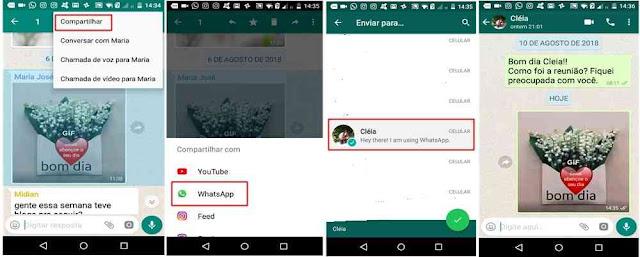 Tutorial ocultando a mensagem encaminhada no Whatsapp