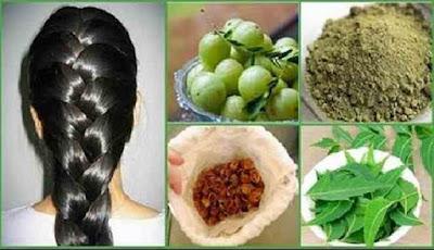 Minyak herbal penumbuh rambut
