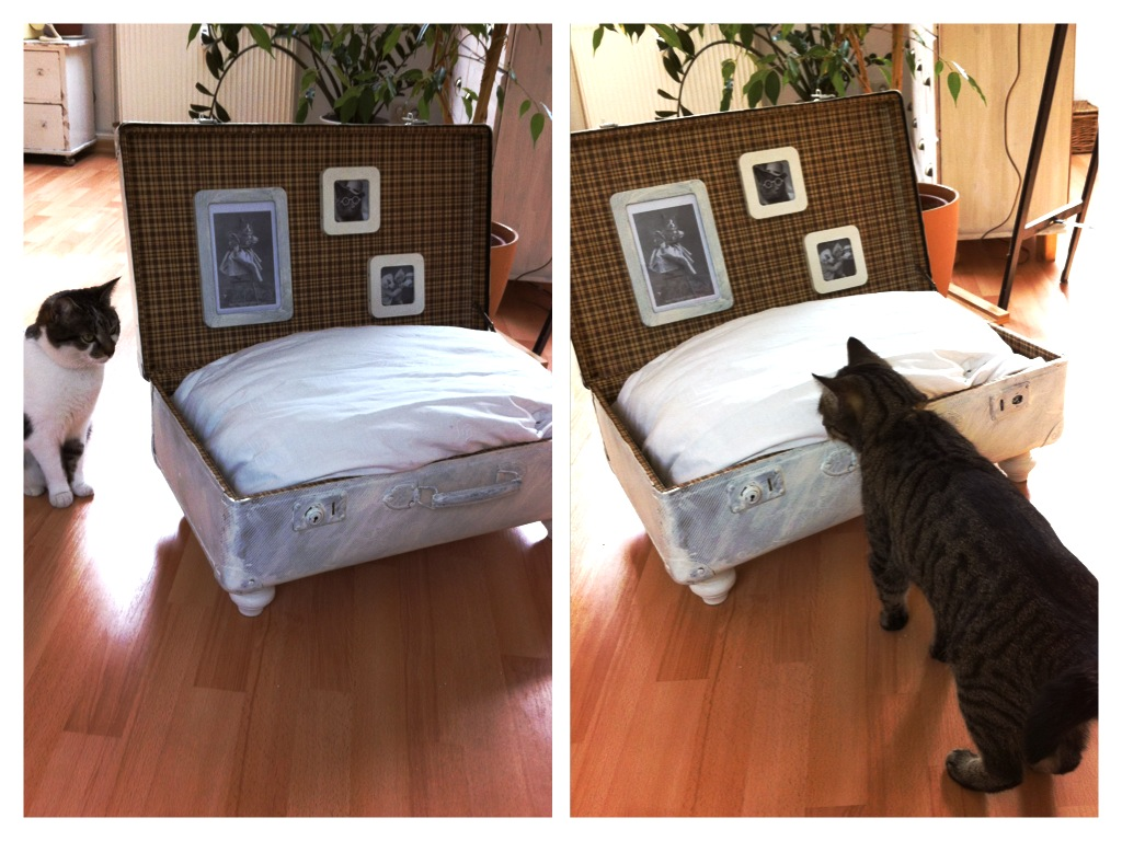 serendipity is life vintage katzen koffer schlafplatz einfach wundersch n. Black Bedroom Furniture Sets. Home Design Ideas