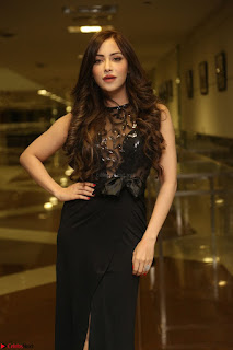 Angela Krislinzki in Transparent Black Gown at Rogue Movie Teaser Launch 1st March 2017 037.JPG