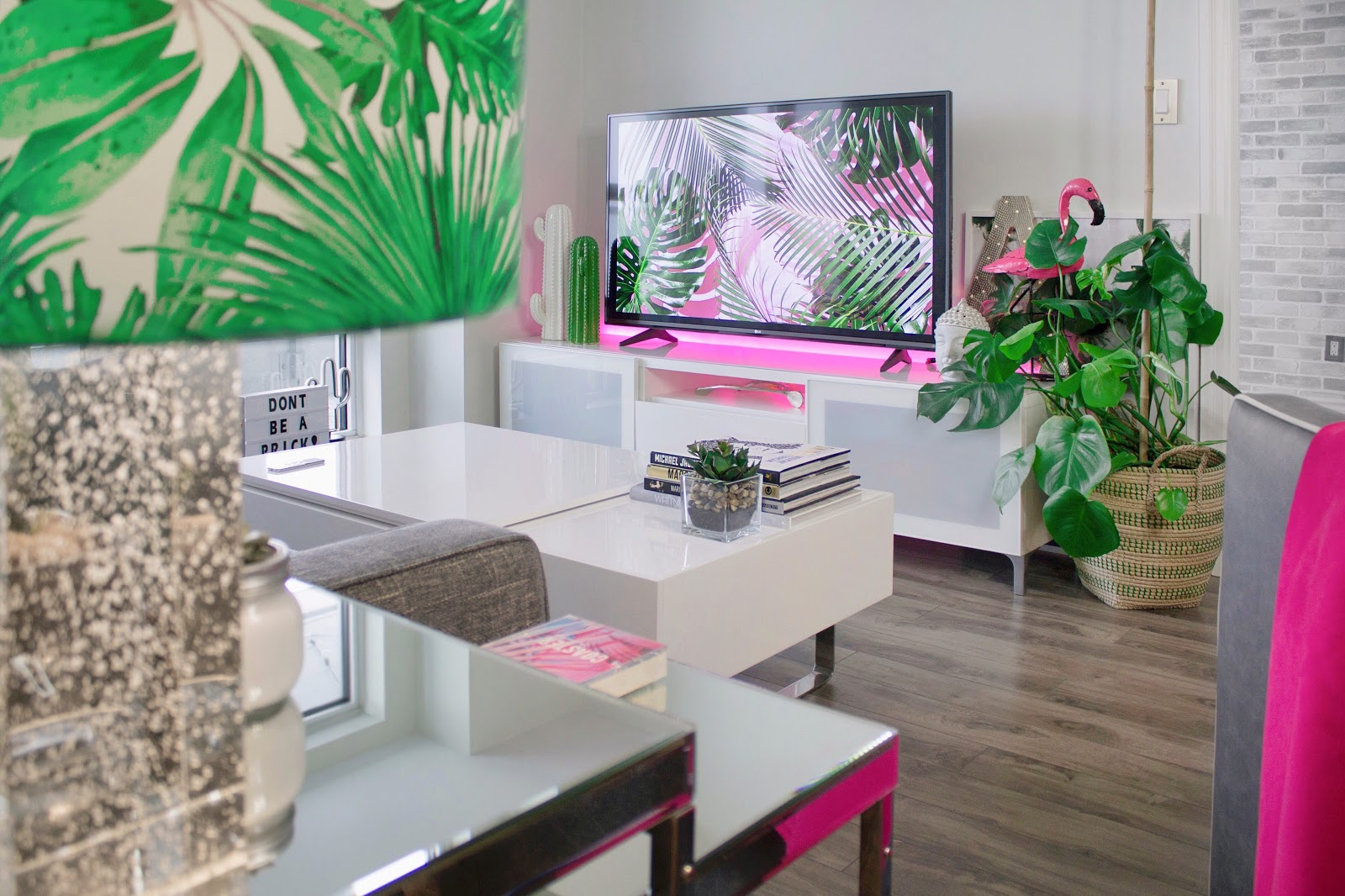 Apartment Books Cactus In White And Pink