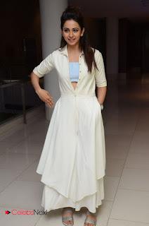 Actress Rakul Preet Singh Pictures at Sarrainodu Success Meet  0063.JPG