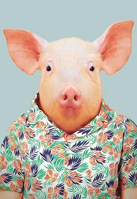 https://www.shabby-style.de/karte-mit-tierportrait-schwein