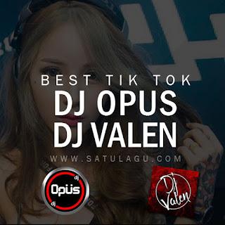 Koleksi DJ Opus & DJ Valen Best Tik Tok Mp3 Rar