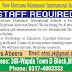 New Horizons Montessori International Schools Multan Jobs
