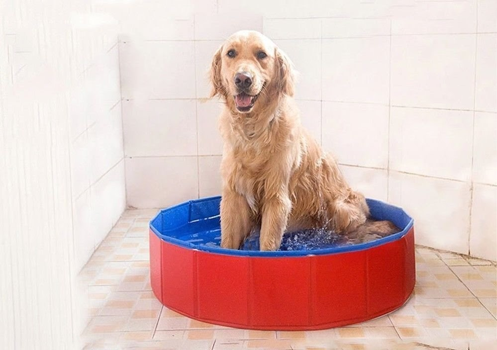 NEWSTYLE Dog Bathing Tub   Foldable Small Pet Dog Cat Swimming Pool Bathtub  Washer