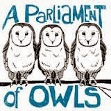 Parliament-Owls-Collective-Noun