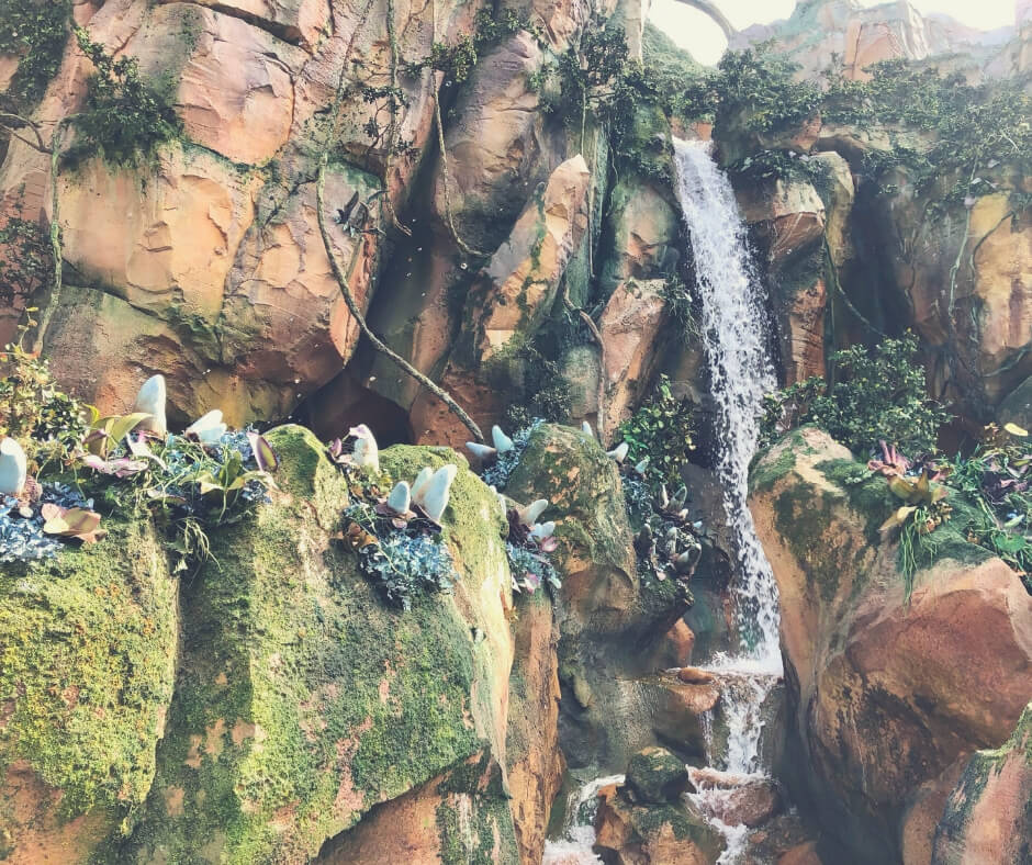 Top 7 Things You Should Do At Animal Kingdom, Walt Disney World | Walking through Pandora is quite an experience, with floating rocks and waterfalls everywhere.