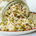Efficacy and Benefits of Sprouts