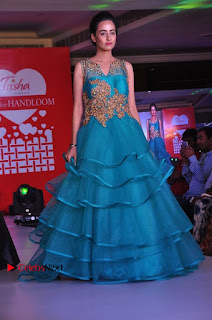 South Indian Celebrities Pos at Love For Handloom Collection Fashion Show  0119.jpg
