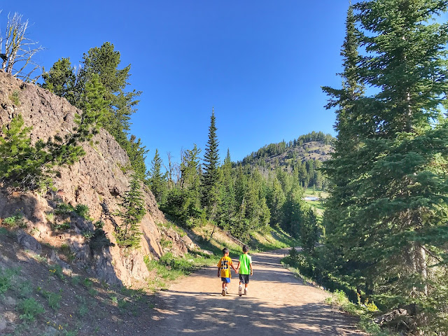 hiking the Mt. Washburn trail