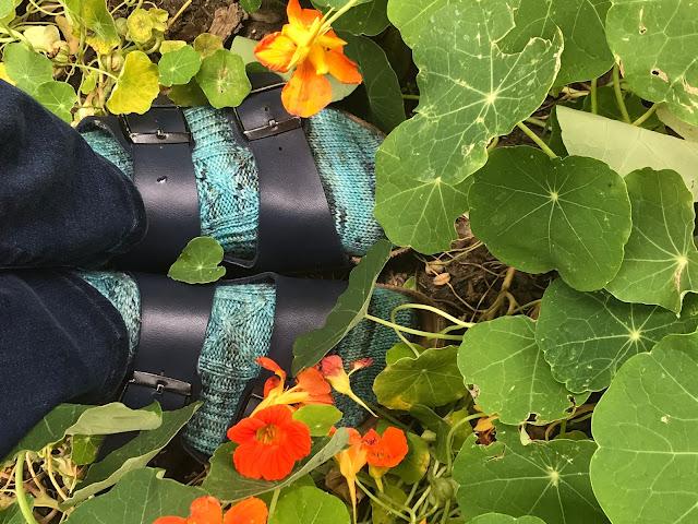 seawall socks