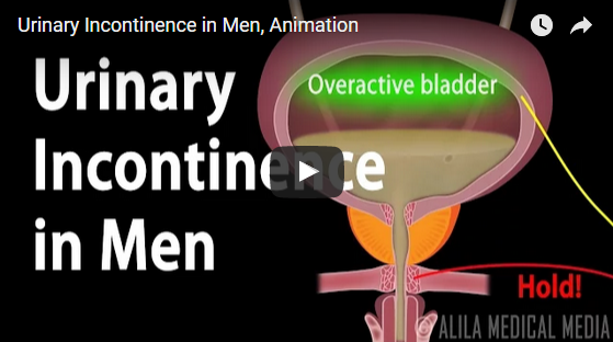 Urinary Incontinence in Men,Urinary Tract Infections,Symptoms and Treatment of Urinary,Urinary incontinence causes,Urination Problems ,healthy life,health tips,how to make urine healthy,urinary bladder,steady dribbling of urine,urine overflows,blocks urine float,Remedy,Surgery,lifecare,lifecarepost,lifestyle tips,life tips