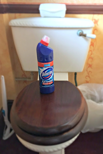 domestos-on-toilet