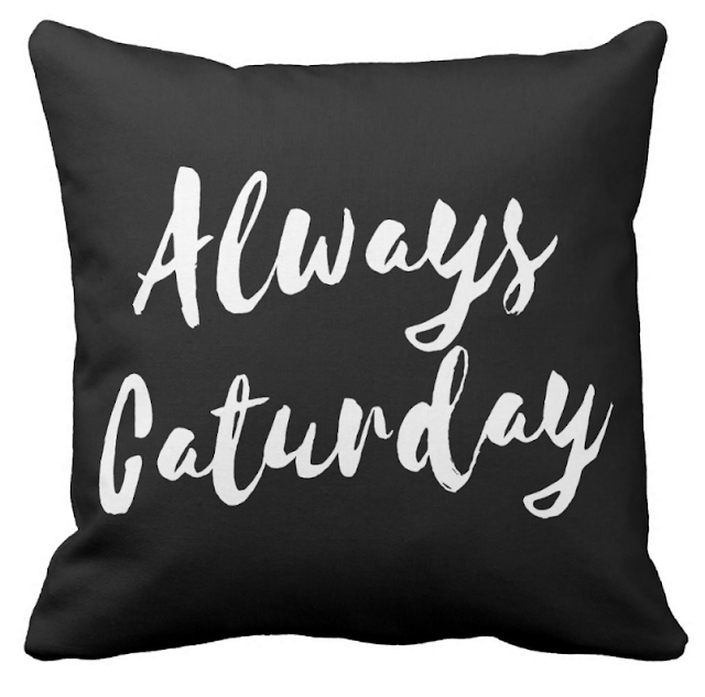 Always Caturday Pillow
