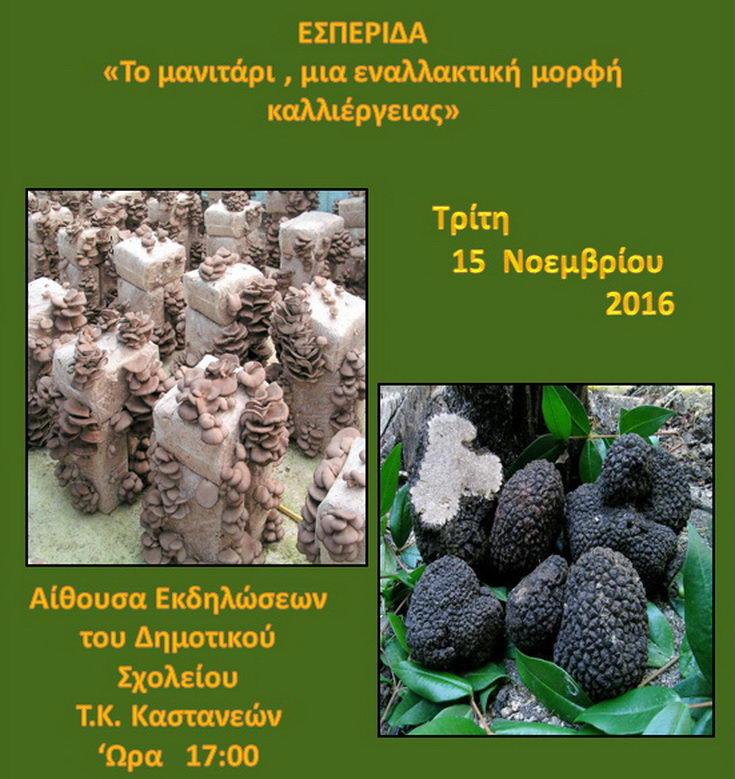 """Εσπερίδα με θέμα """"Το μανιτάρι, μια εναλλακτική μορφή καλλιέργειας"""""""