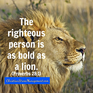 The righteous person is as bold as a lion Proverbs 28:1