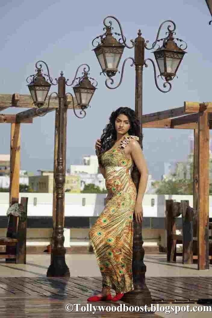 Tamil Actress Dhansika Beautiful Photo Shoot Stills