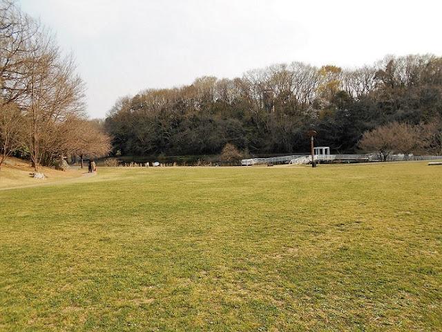 自然博物館の公園