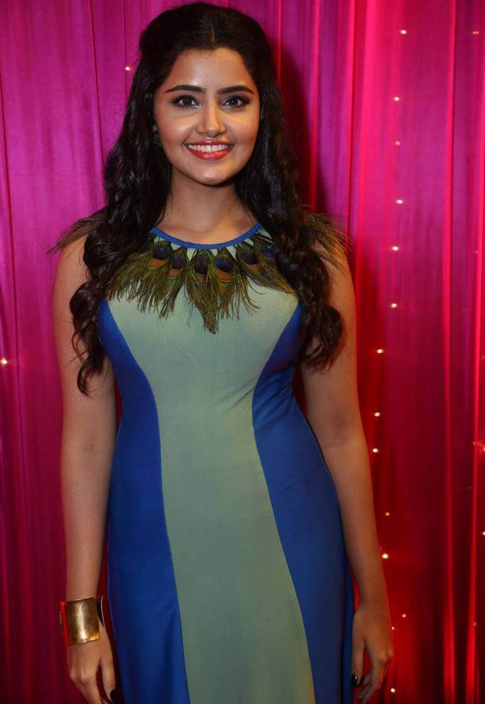 Anupama At Zee Telugu Apsara Awards 2017 In Blue Dress
