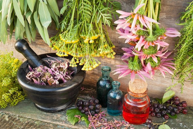 Health Remedies for Healthy Livings