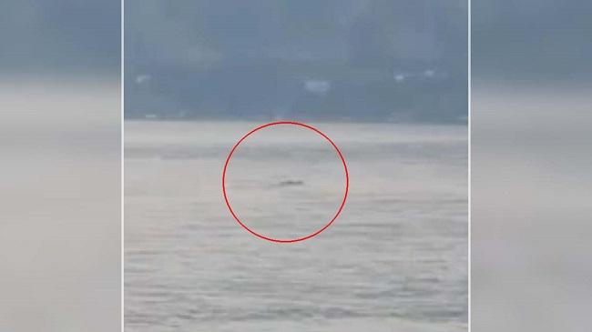 Καταγράφουν ένα μυστήριο πλάσμα στην λίμνη Okanagan στον Καναδά (video)