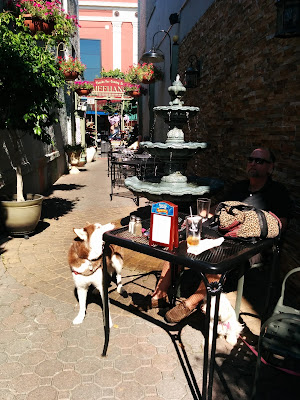 Relaxing at an dog friendly outdoor cafe is a great place for lunch!