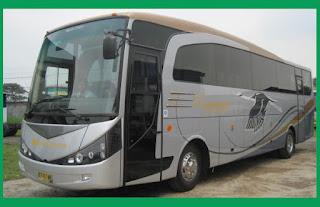 Bus Pariwisata Limas